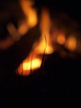 ognisko Siedlisko na Wygonie