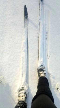 narty biegówki zima w Siedlisku na Wygonie
