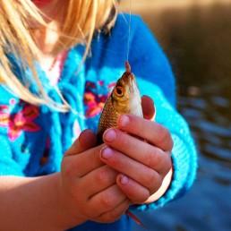 ryby zwierzaki Siedlisko na Wygonie